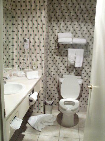Evergreen Inn and Suites: Bathrm