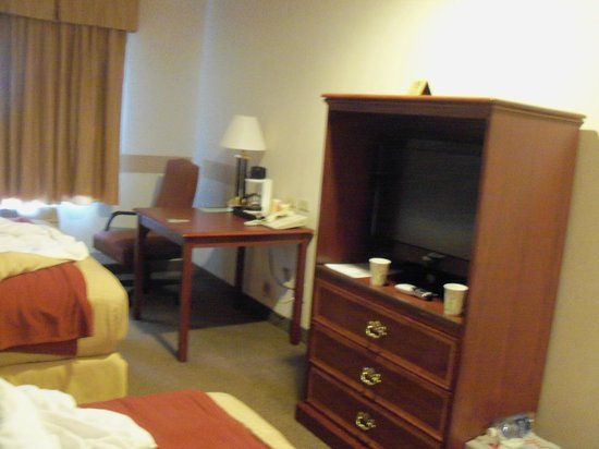 Evergreen Inn and Suites : tv