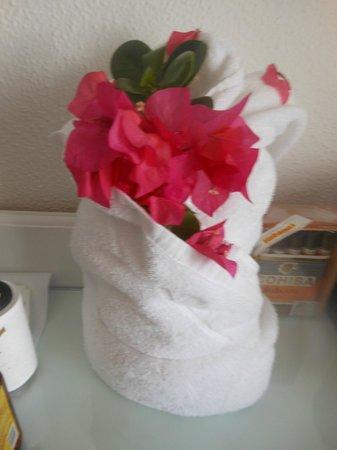 Hotel Riu Palace Macao: towel art