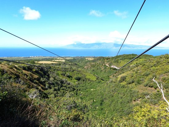 Kapalua Ziplines : One of the last zip-lines of the day!