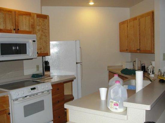 Lutsen Resort on Lake Superior: Kitchen in master unit of Poplar River condos