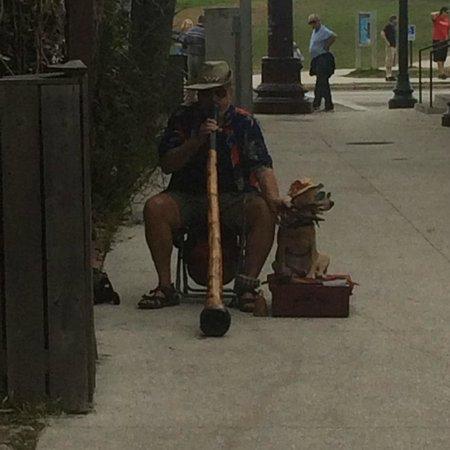 St. George Street : Didgeridoo