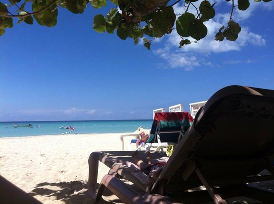 Firefly Beach Cottages: Lying on the sun bed in the morning enjoying the view, under the tree saving me from sunshine