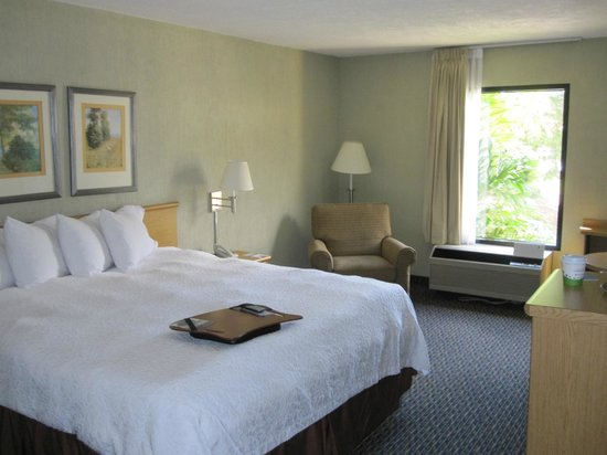 Hampton Inn & Suites by Hilton San Jose Airport : Very comfortable bed (firm)