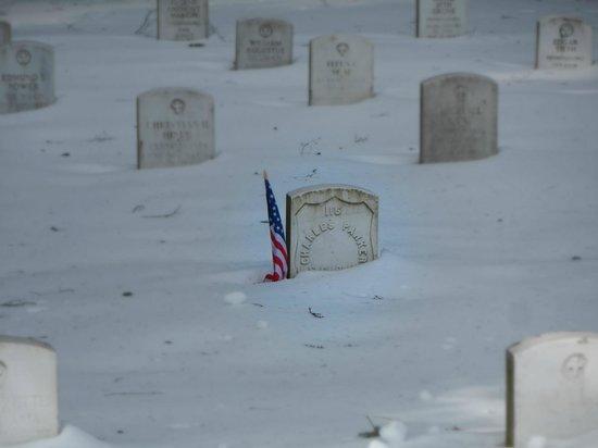 Quality Inn Gettysburg Battlefield: Cemetery behind Hotel