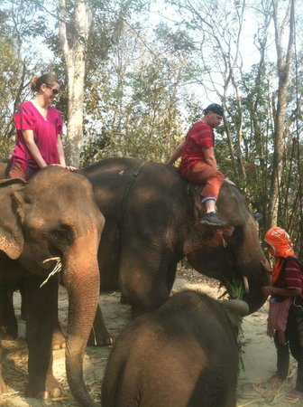 Patara Elephant Farm - Private Tours : Looking for the dismount... 9.95!