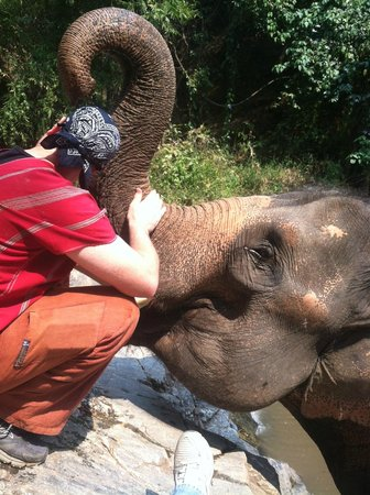 Patara Elephant Farm - Private Tours : Just hugging an elephant, WHAT??