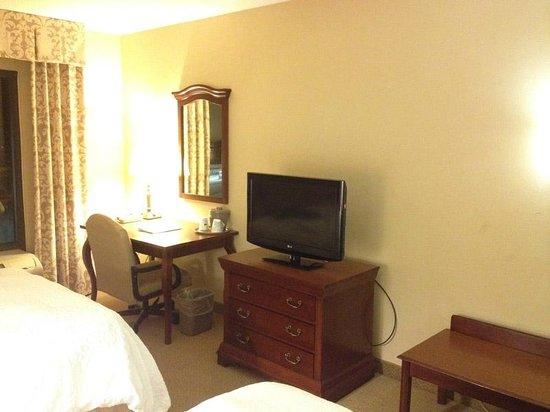 Hampton Inn Dunn: Room