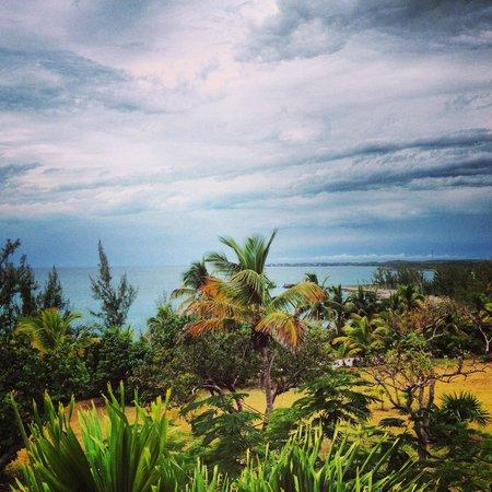 Rainbow Inn: Caribbean Dream