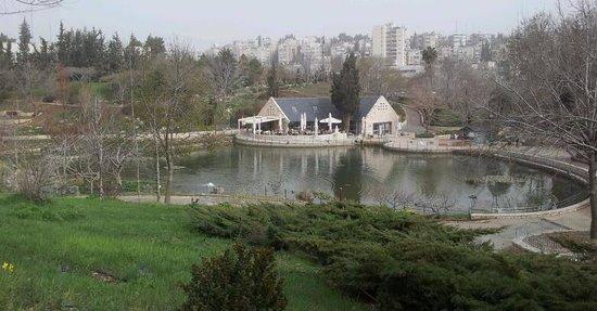 Jerusalem Botanical Gardens: Botanical Gardens, Jerusalem