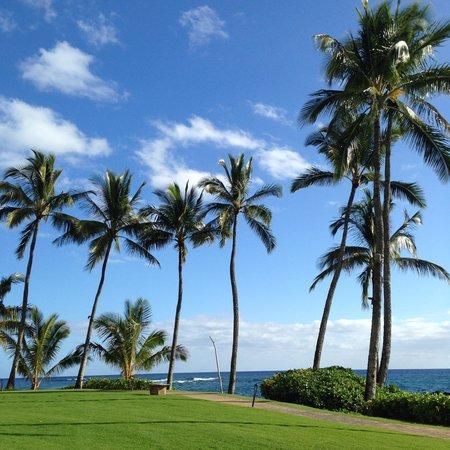 Sheraton Kauai Resort : SHERATON