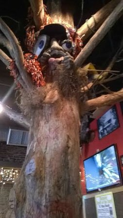 Moe's Original BBQ : Tree inside
