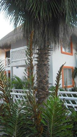 Sunscape Sabor Cozumel: Buildings