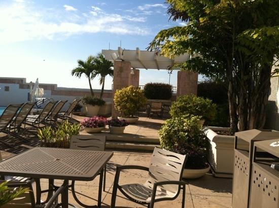 Hyatt Regency Orlando International Airport : poolside in the morning
