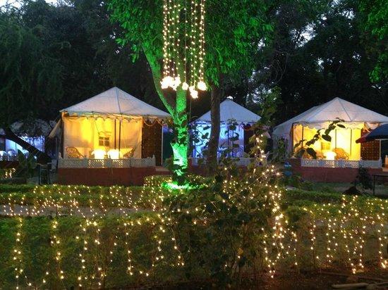 The Aravali Tent Resort: Arranged during wedding program