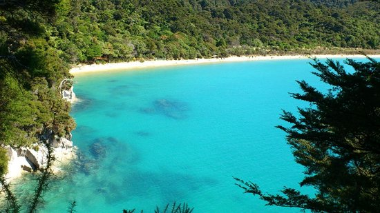 Abel Tasman National Park, Yeni Zelanda: Slice of paradise