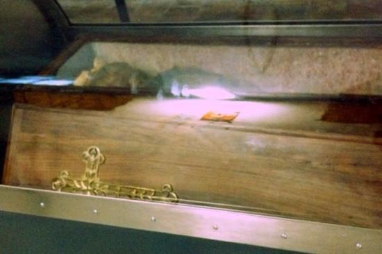 Kapuzinergruft von Palermo (Le Catacombe dei Cappuccini): крошка Разалия