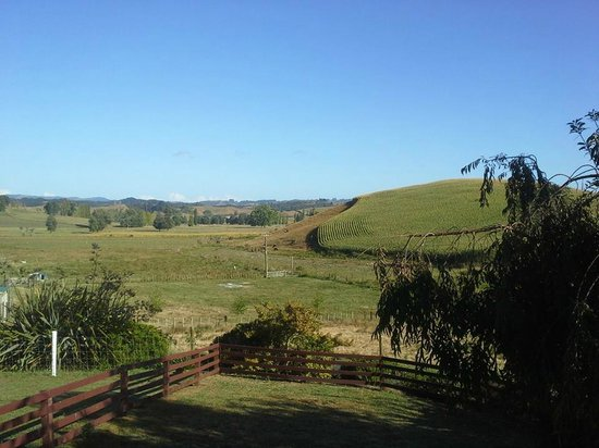 Waitomo Farmstay : View from the porch of Cottage 2