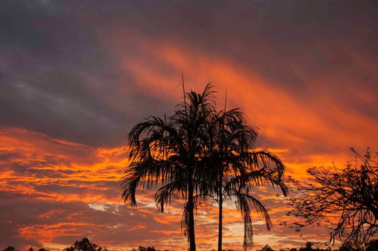 Litchfield Tourist Park : great sunsets viewed from the park 1