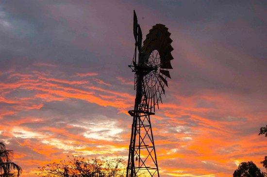 Litchfield Tourist Park : windmill