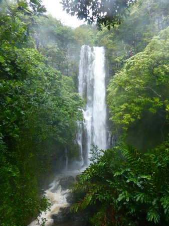 Holo Holo Private Taxi Tours: beautiful waterfall
