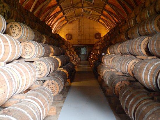 Habitation Clement: cantina botti rum