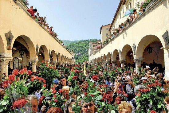 Benedizione delle Rose. Festa di Santa Rita il 22 maggio a Cascia