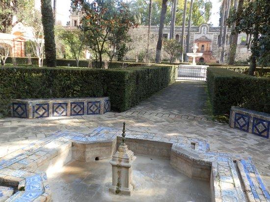 Alcazar : giardini