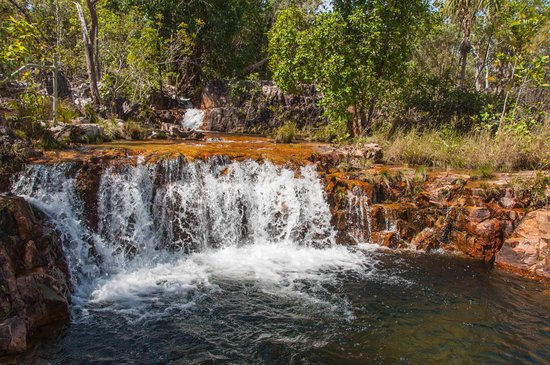 Batchelor, Australië: Top pool at Tjaetaba falls near green ant creek
