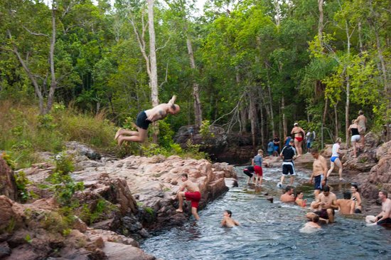 Batchelor, Australia: dive right in