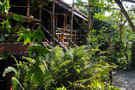 Spring Valley Resort : Garden and restaurant