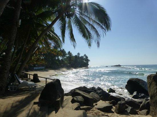 Sri Gemunu Beach Resort: It's as good as it looks !