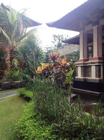 Sri Phala Resort & Villa : le chemin entre les chambres.