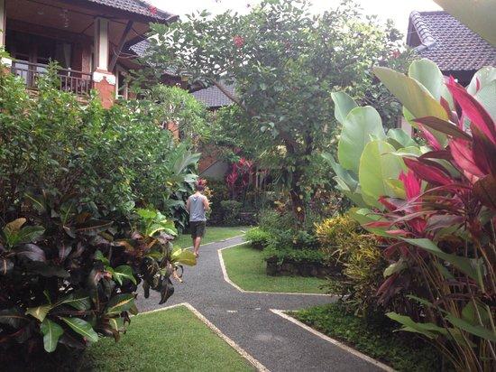 Sri Phala Resort & Villa : la vue spectaculaire de sa végétation