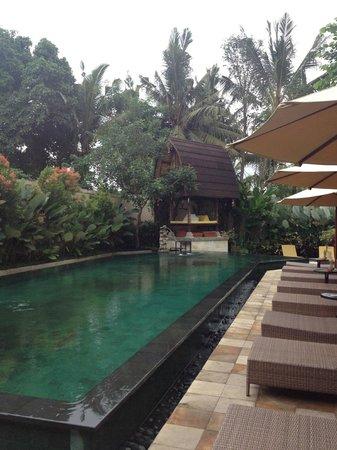 Sri Phala Resort & Villa: une piscine très réussis avec sa superficie miroiter