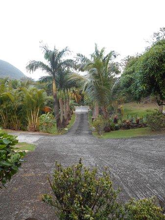 Habitation Grande Anse: entrée privée