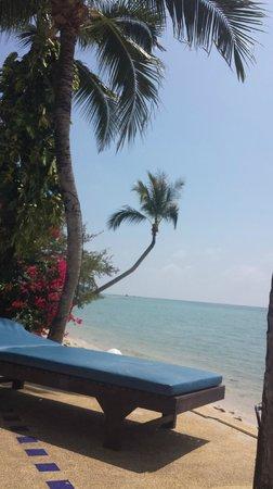 Blu' Beach Bungalows: Strandsängar precis vid vattnet