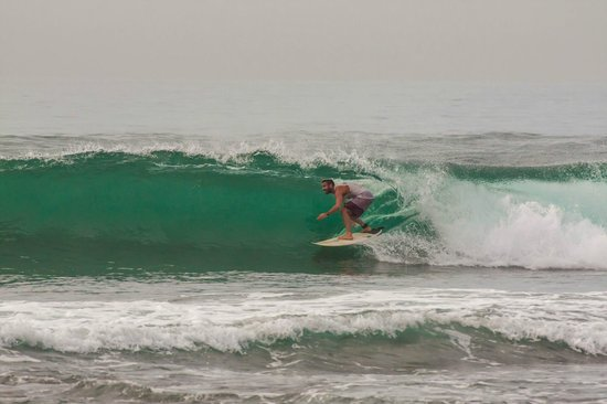 The Escape Surf School: Surf Instructor Will Hinton