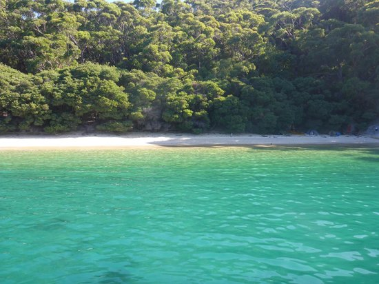 Wildlife Coast Cruises: Refuge Cove