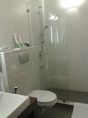 Ahuja Residency DLF Phase 2: Bathroom