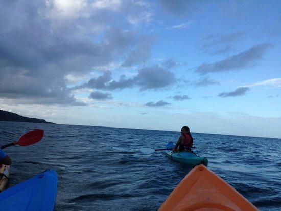 Paddletrek Kayak Adventures: breathtaking views