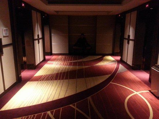 Holiday Inn Macao Cotai Central : Lift Lobby