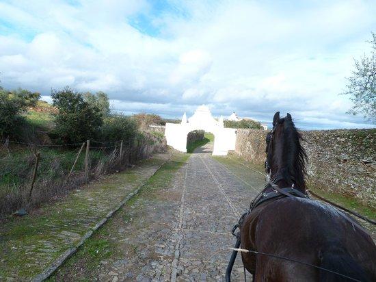 Horta da Moura - Hotel Rural: Passeio de charrete