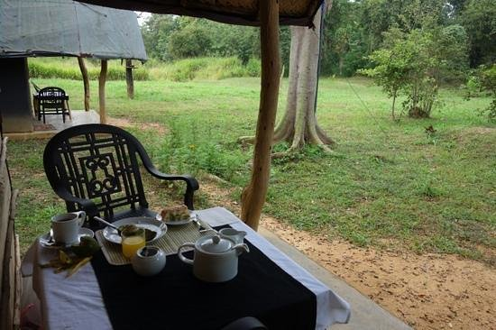 The Lodge Camps: greatbreakfast