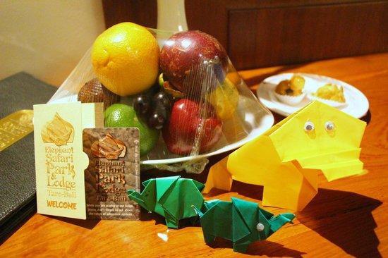 Elephant Safari Park & Lodge: Fruit