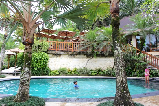 Elephant Safari Park & Lodge : Swimming pool