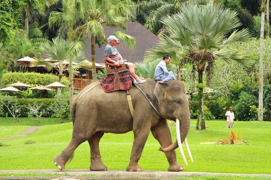 Elephant Safari Park & Lodge: Ride