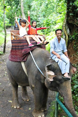 Elephant Safari Park & Lodge: Ride
