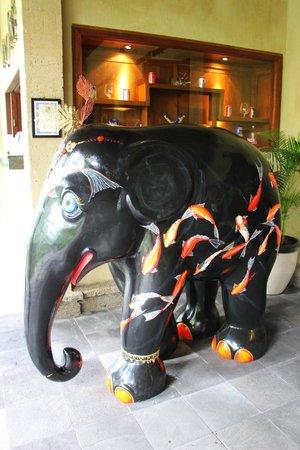 Elephant Safari Park & Lodge: Elephant