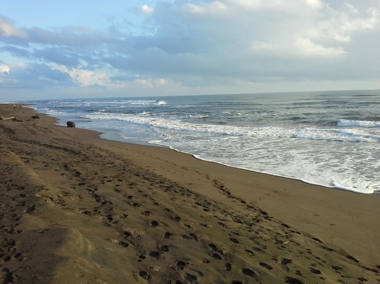 Mawamba Lodge: the beach